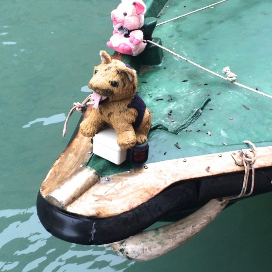 Boho Gondola, Venice (Mark Ferguson).