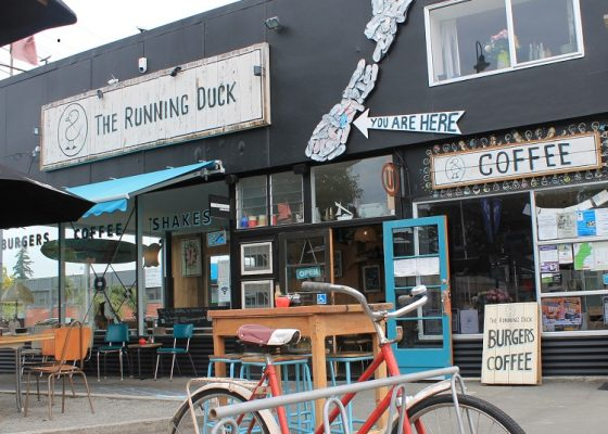 Running Duck - Geraldine
