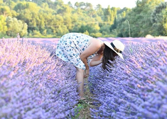 Lavender Oil Does Everything by Baraa Jalahej, Unsplash